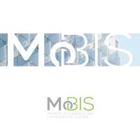 mobis ws200wo