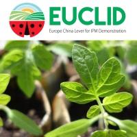 euclid final events